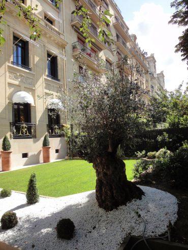 UNE SUBTILE EXTENSION ET RENOVATION D'UN HOTEL PARTICULIER PARIS